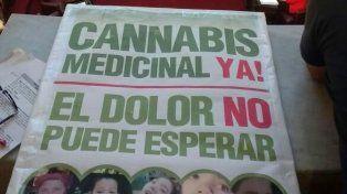 La provincia, a un paso de legalizar los tratamientos con cannabis