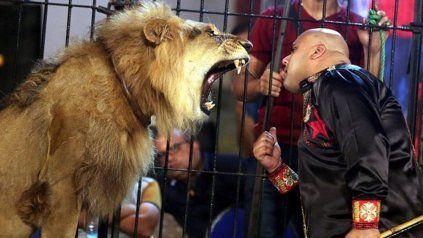 El tremendo video de un domador que murió tras ser atacado por un león en pleno show