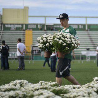 Preparativos. Un chico ayuda al diseño floral en el estadio Arena Condá.