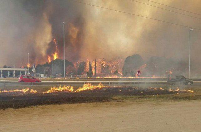 Resultado de imagen para imagenes de los incendios en valeria del mar