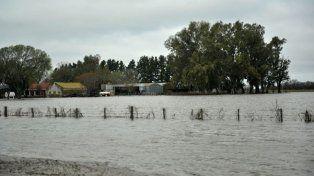 El agua avanzó sobre los campos