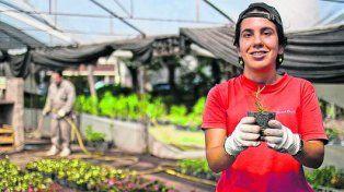 Trabajo que da dignidad. El vivero de Rosario funciona en Lamadrid al 250 bis y tiene varios puntos de venta.