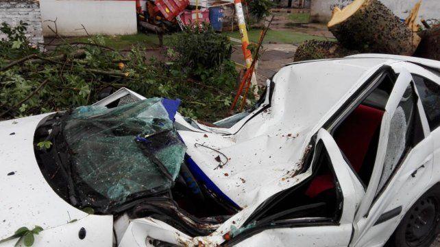 Por la tormenta, un palo borracho partió al medio a un auto en la zona sur de la ciudad