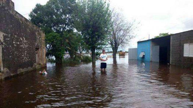 Por la inundación cerró un tambo cerca de Rafaela con más de cien años de historia
