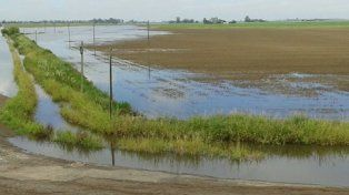 Chabás. Postal del lunes sobre zona rural chabasenses. Cayeron 130 milímetros sobre los 180 que ya habían llovido la semana pasada.