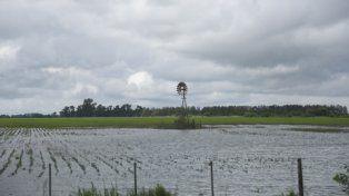 Elocuente. Los campos que quedaron inundados son la postal que resume los efectos que está ocasionando el monocultivo sobre la .capacidad de absorción de los suelos.