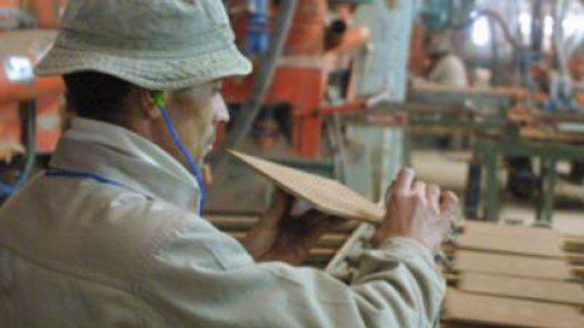 Abren investigación por la importación de porcelana y cerámica