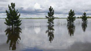 Una importante zona de la provincia sufrió el embate de las aguas.