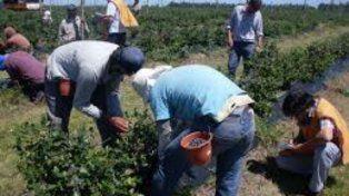 El trabajo infantil está prohibido y es sancionado en varias leyes.