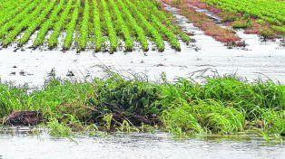 Desastre pluvial. Las lluvias extraordinarias de las últimas semanas superaron los promedios en zonas agrícolas clave.