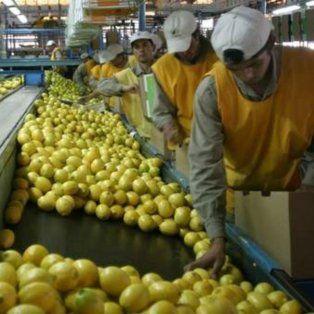 estados unidos suspendio la importacion de limones desde argentina