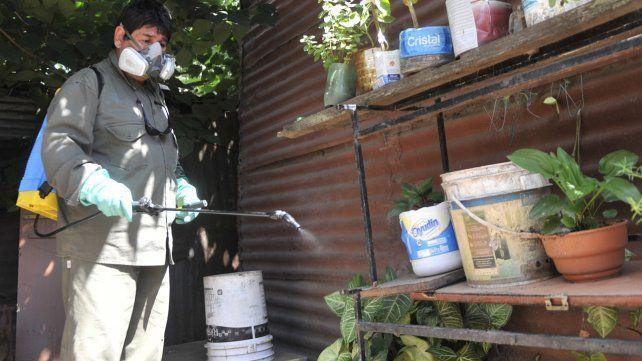 Descacharrizar es la mejor prevención tanto para el dengue como para el zika.
