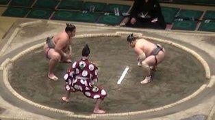 Tremendo nocaut en una pelea de Sumo