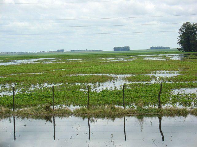Las inundaciones provocaron pérdidas millonarias en la provincia.