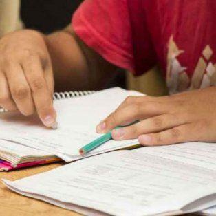 Las clases de apoyo serán en el ámbito de la biblioteca popular Pocho Lepratti de barrio Tablada.