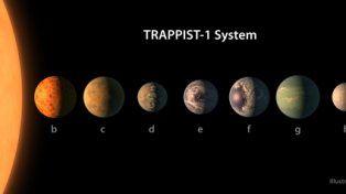 nuevo! La ilustración artística del sistema extrasolar compara el tamaño de los planetas, la distancia de su estrella anfitriona y sus potenciales superficies, incluyendo el agua, hielo y atmósferas.