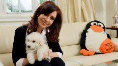 Cristina dijo que la única compañera en su casa es su perra Lolita.