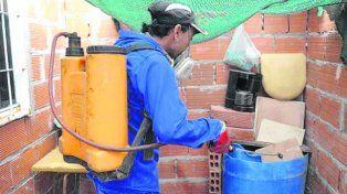 fumigación. Intensifican las tareas de combate al Aedes aegypti.