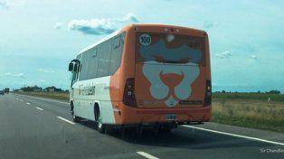 al aeropuerto. Los vehículos que trasladan con frecuencia a pasajeros que salen de Ezeiza y Aeroparque.