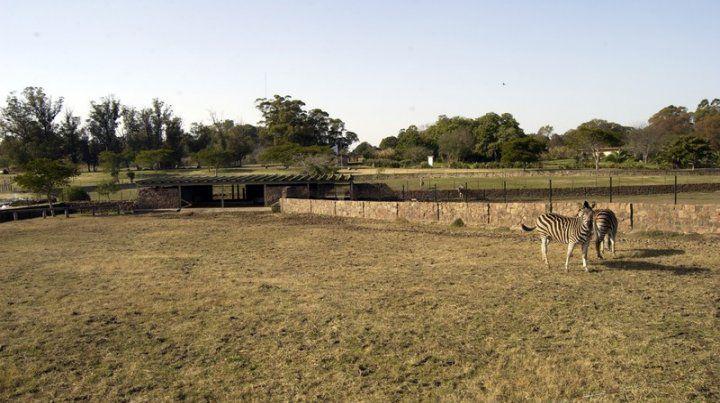 Parque Lecoq.