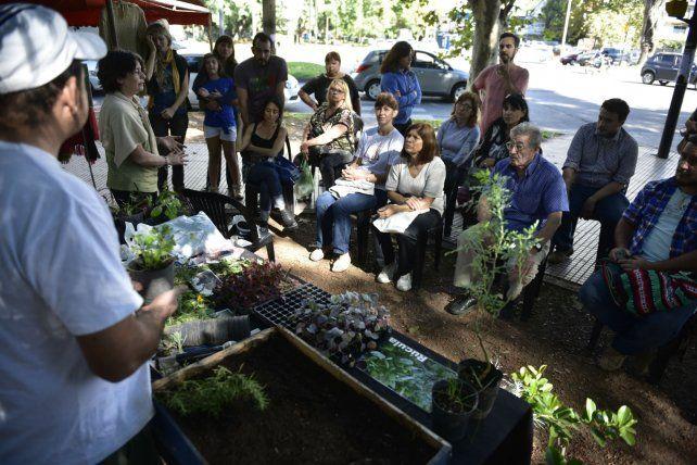 Lecciones productivas. Promotores del área de Agricultura Urbana explicaron cómo montar las huertas.