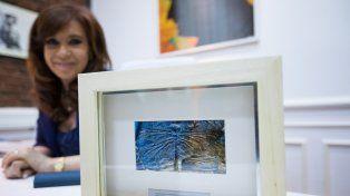 Un equipo de científicos del Conicet bautizó a un insecto en honor a Cristina