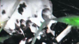 Los restos óseos fueron hallados escondidos entre la maleza en la autopista Rosario-Buenos Aires.