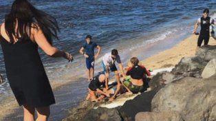 El momento en que el surfer es retirado del agua tras el ataque del escualo.