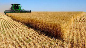 El motor. El sector agropecuario encabezó la suba de la actividad.
