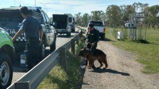 Un perro entrenado marcó el lugar donde estaba enterrado el cuerpo de Araceli