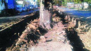 La reforma de avenida San Martín ya generó cinco proyectos inmobiliarios
