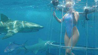 La actriz porno fue mordida por un tiburón durante un rodaje erótico bajo el agua.