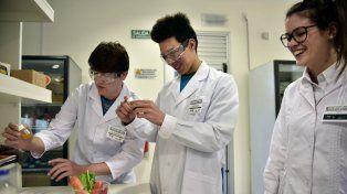 Fascinados. Alumnos de un colegio de Esperanza se divirtieron y experimentaron en los laboratorios.