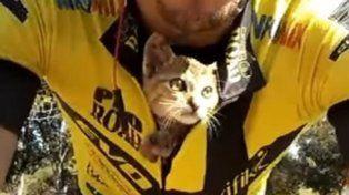 Viitor Fonseco salvó a un gato abandonado.