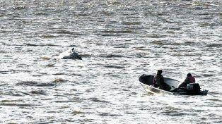 guardacostas. Efectivos de Prefectura acercándose del cetáceo.