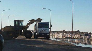 continuan las tareas de la comuna y la provincia para contener las aguas de la laguna de melincue