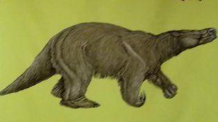 El animal habitó la zona hace 800 mil años. El cráneo se halló en una tosquera y hoy está en el Museo de San Pedro
