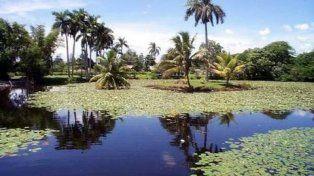 Riqueza. Los humedales se deben proteger por su biodiversidad y por los servicios ambientales que prestan