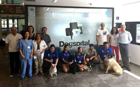 mascotas. La presentación del programa llamado Dogspital.