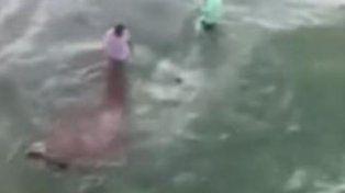 Un video registró el momento en el que un tiburón ataca a dos pescadores