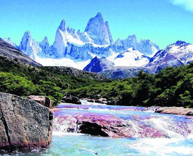 Tesoro compartido. El monte se encuentra ubicado en la Patagonia