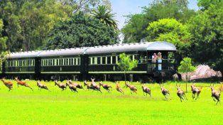 Inolvidable postales. El tren ofrece una amplia variedad de rutas de distinta duración, desde un trayecto de 48 horas hasta 14 días de viaje,