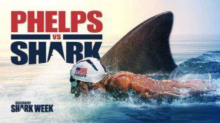 El peligroso desafio de Michael Phelps: compitió contra un tiburón blanco