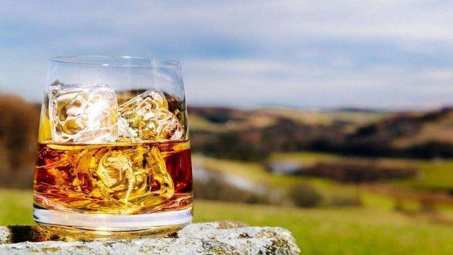 Una empresa elige a tres postulantes para que viajen por el mundo y tome whisky, todo pago