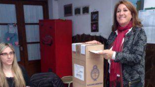 Fein pidió a los rosarinos que vayan a las urnas a expresar su voto democrático