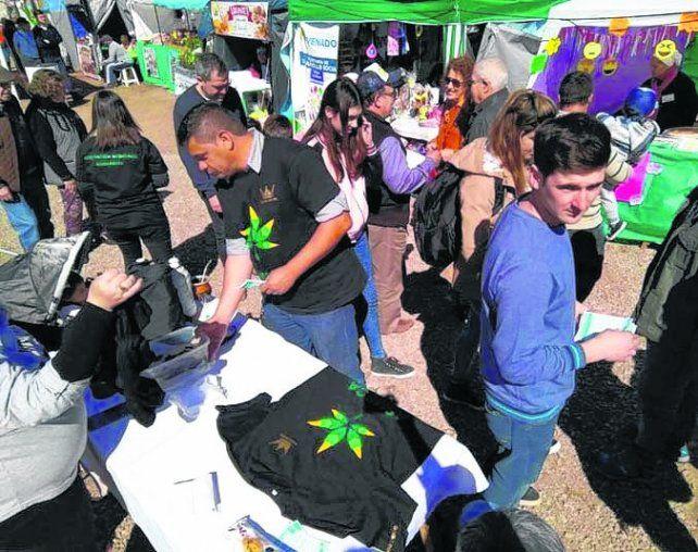 Cannabis. Jóvenes y municipio