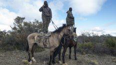 Oteando. Los miembros de la comunidad mapuche Pu Lof vigilan de cerca el operativo de rastrillaje.