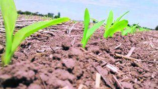 manejo. El manejo sostenible de la tierra será uno de los ítems a analizar en el nuevo informe del IPCC.
