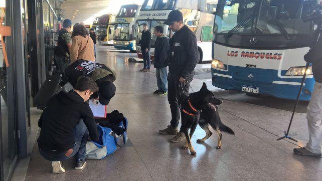 Efectivos policiales con el apoyo de perros sabuesos realizan controles en la Terminal.