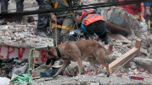 Los mexicanos desplazados por el sismo buscan refugio por toda la ciudad
